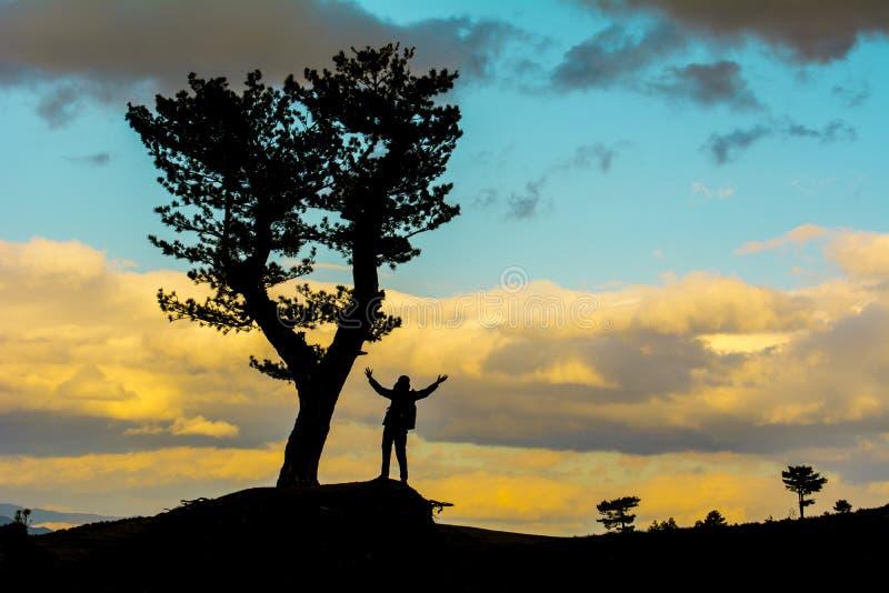 Obtenez l'inspiration de la nature image libre de droits