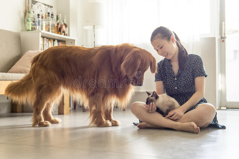 Obtenha junto com gatos e cães e meninas imagem de stock royalty free