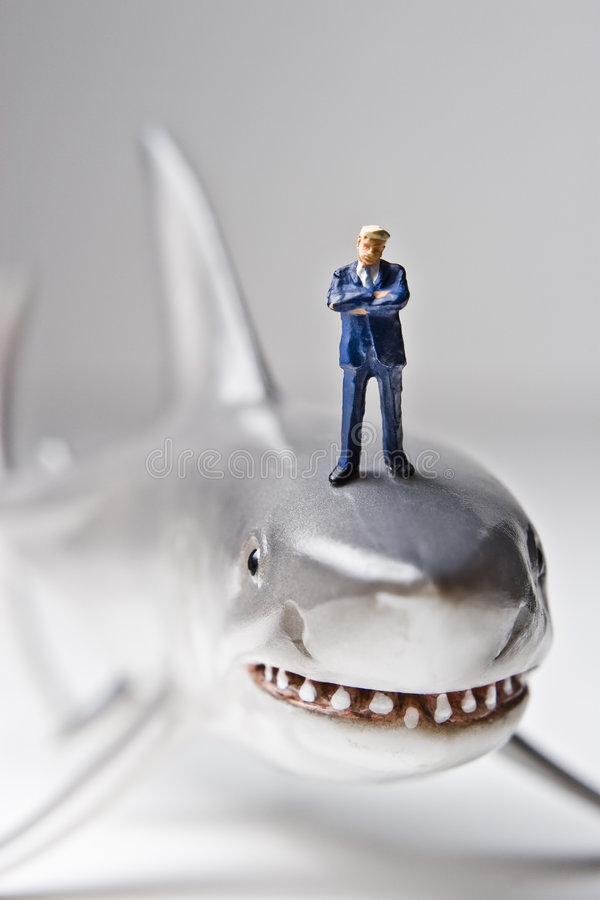 A obtenu d'être un requin dans le monde d'affaires image stock