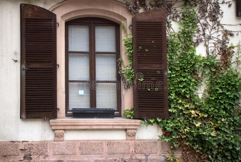 Obturadores en ventana imagen de archivo libre de regalías