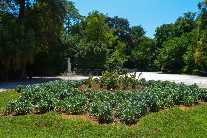 Obywatela ogród w Ateny, Grecja na Czerwu 23, 2017 zdjęcia stock