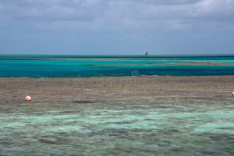 Océan bleu pittoresque sur la Grande barrière de corail photo libre de droits