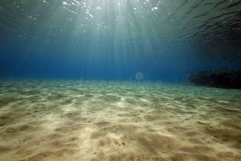 Océan, corail et poissons images stock
