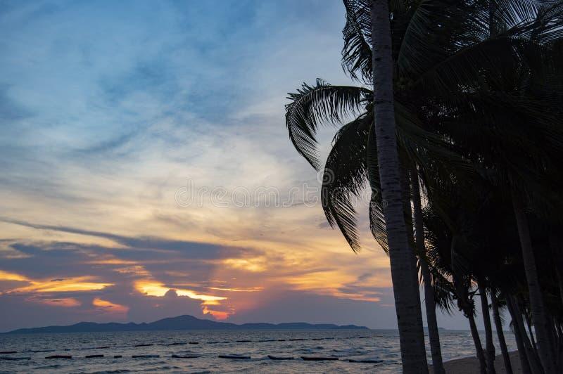 Océan de coucher du soleil de palmier de noix de coco de silhouette sur le ciel bleu orange de plage d'été tropical de mer image stock