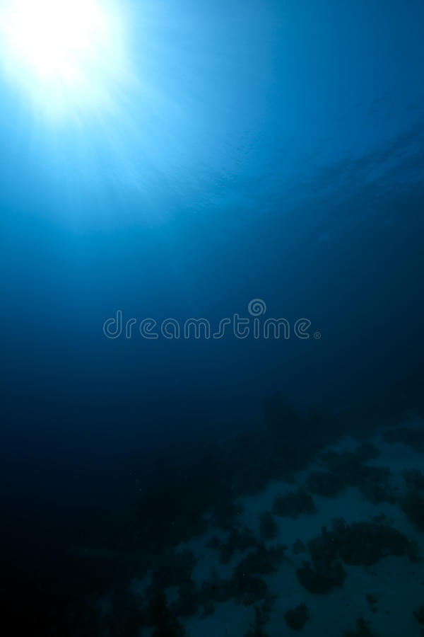 Océan large bleu photo libre de droits