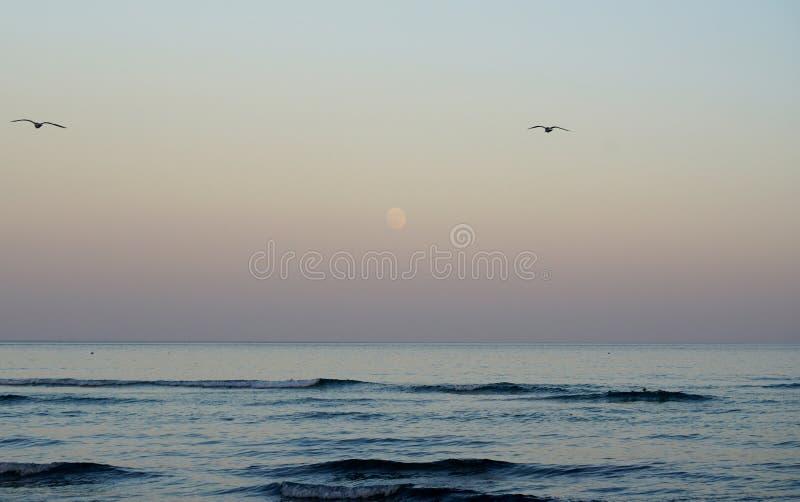Océan magique Lever de la lune au-dessus de l'océan soirée de pleine lune photos libres de droits
