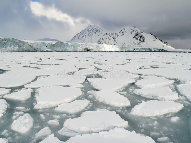 Océano ártico - hielo de paquete en la superficie del mar fotos de archivo libres de regalías