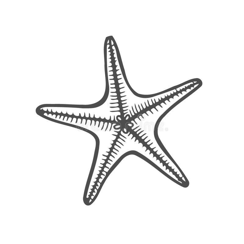 Océano de la naturaleza de las estrellas de mar libre illustration