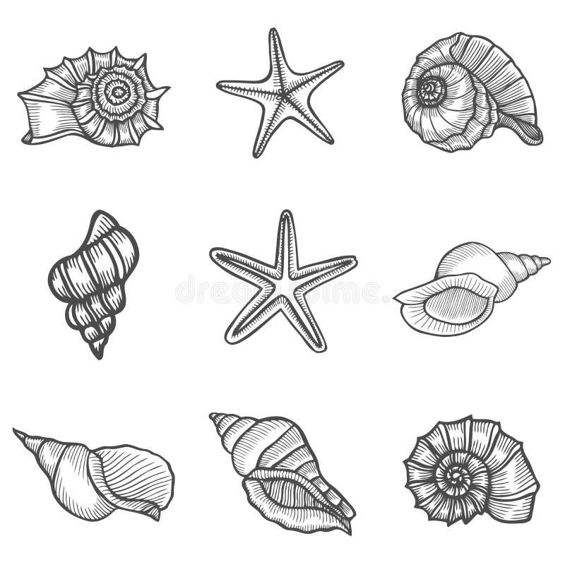 Océano de la naturaleza de las estrellas de mar stock de ilustración