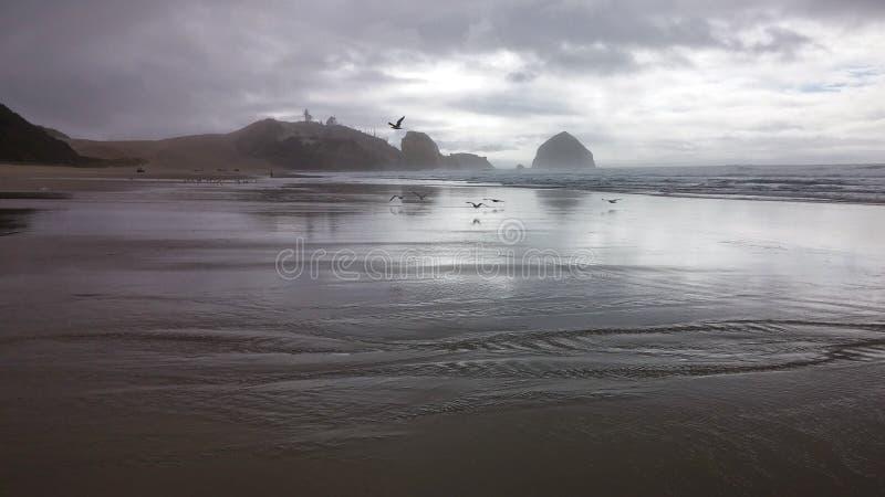Océano del invierno fotografía de archivo libre de regalías