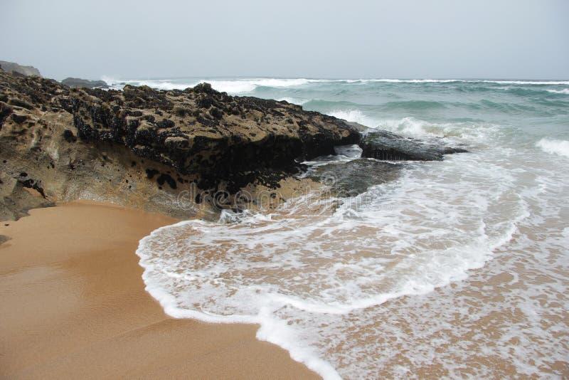 Océano y acantilados fotografía de archivo
