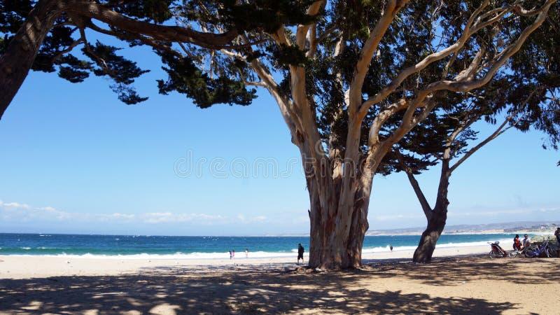 Océano y playa fotos de archivo libres de regalías