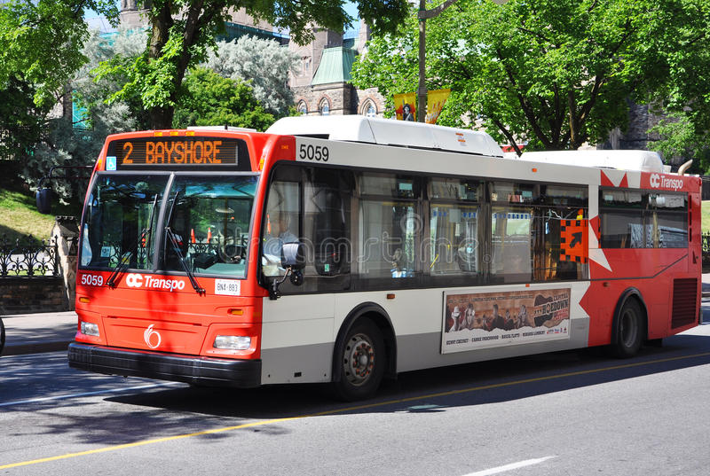 OC Transpo Bus in downtown Ottawa royalty free stock photography