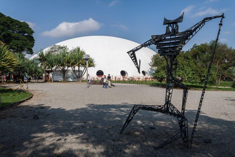 Oca в парке Сан-Паулу Бразилии Ibirapuera стоковые изображения rf