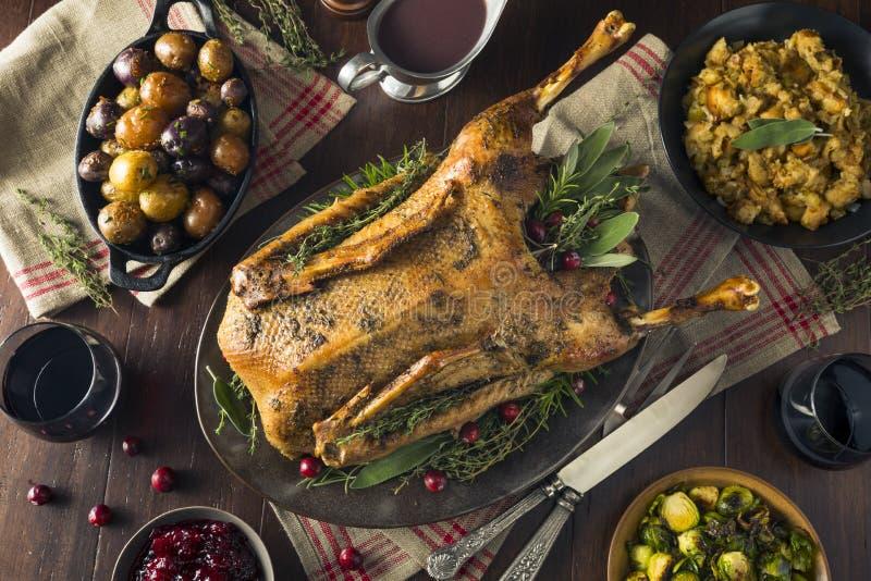 Oca arrostita festiva casalinga di Natale fotografie stock