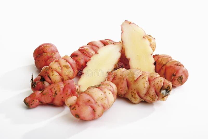 Oca - Oxalis tuberosa stock image. Image of vegetable ...