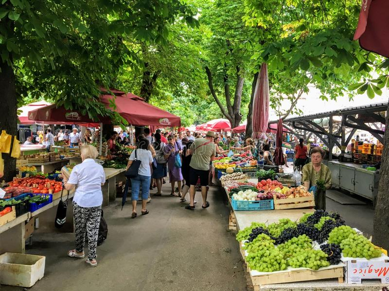 Ocals och besökare som shoppar på den lokala marknaden för ny jordbruksprodukter på en härlig sommardag under träden av i stadens arkivbilder