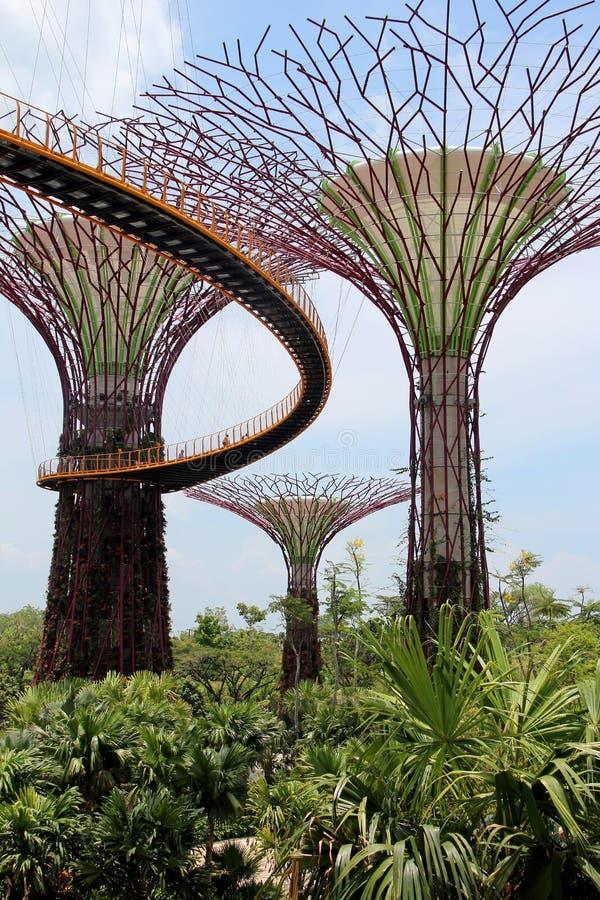 OCBC Skyway - Singapour image libre de droits