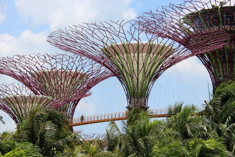 OCBC Skyway - Singapur lizenzfreies stockbild