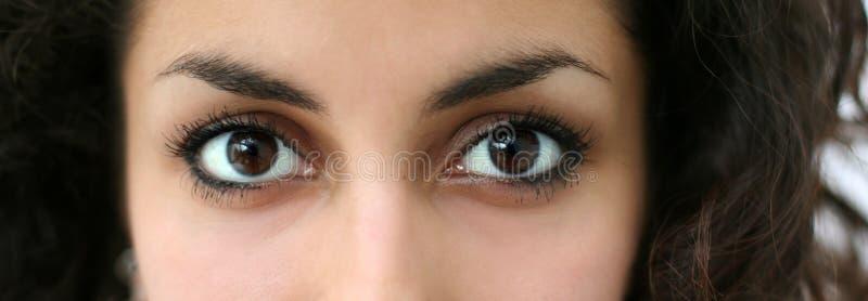 Occhi arabi fotografie stock