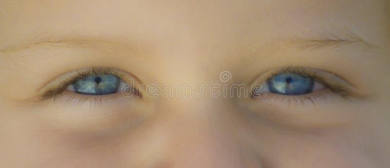 Occhi azzurri immagini stock