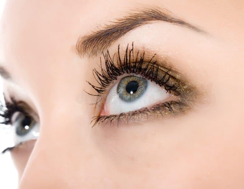 Occhi azzurri immagine stock