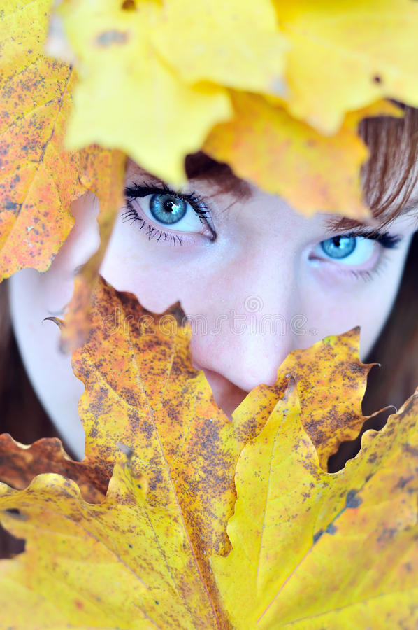 Occhi di autunno immagine stock libera da diritti