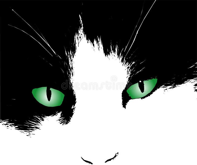 Occhi di gatti royalty illustrazione gratis