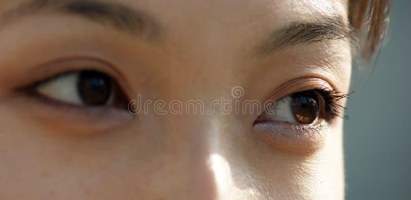 Occhi di giovane donna asiatica fotografia stock libera da diritti