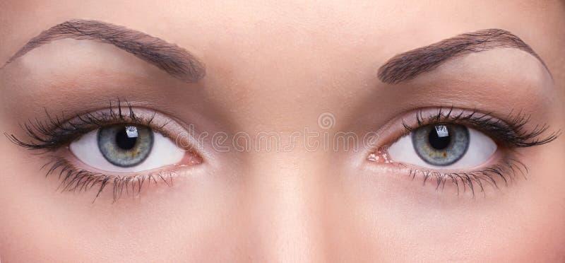 Occhi di una giovane donna fotografia stock