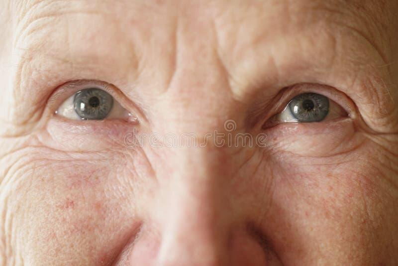 Occhi senior della nonna della donna che guardano alla fine della macchina fotografica sul ritratto fotografia stock libera da diritti