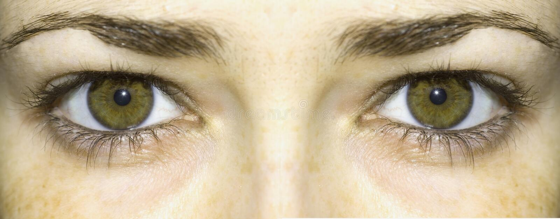 Occhi verde intenso immagini stock libere da diritti