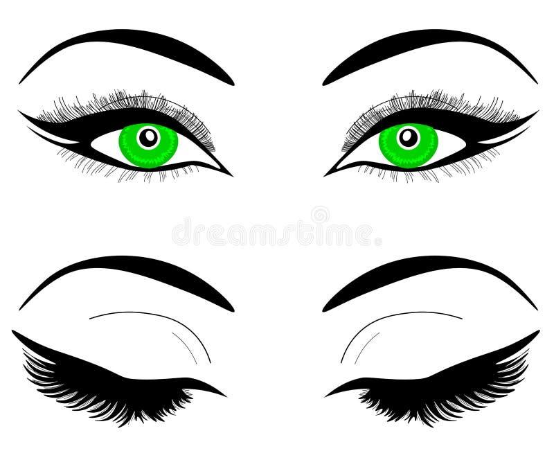 Occhi verdi di web di una donna o di una ragazza Sopracciglia nere, trucco, cigli Un insieme degli occhi aperti e chiusi illustrazione vettoriale
