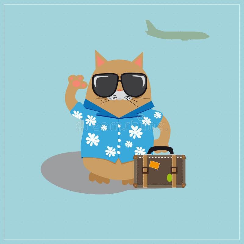 Occhiali da sole d'uso turistici del gatto e una camicia con fotografie stock libere da diritti