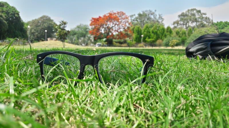 Occhiali sull'erba immagini stock