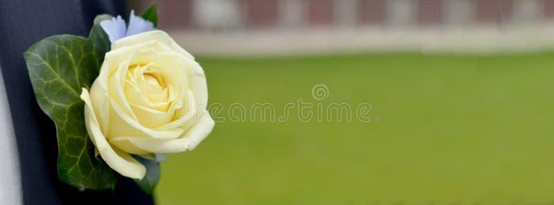 Occhiello di nozze con la rosa gialla sul vestito dell'uomo immagine stock libera da diritti
