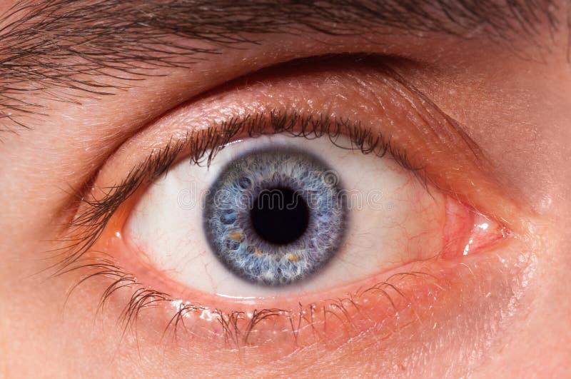 Occhio immagine stock