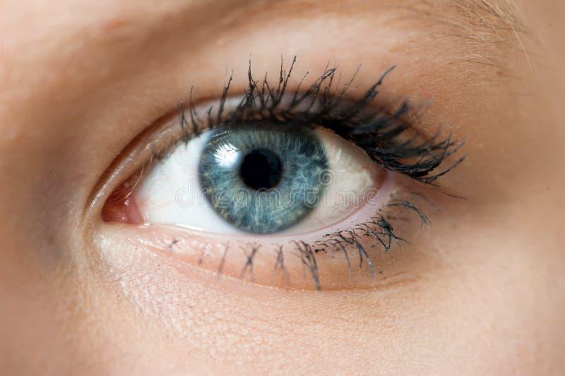 Chiuda Sulla Foto Dell'occhio Azzurro Della Donna ...