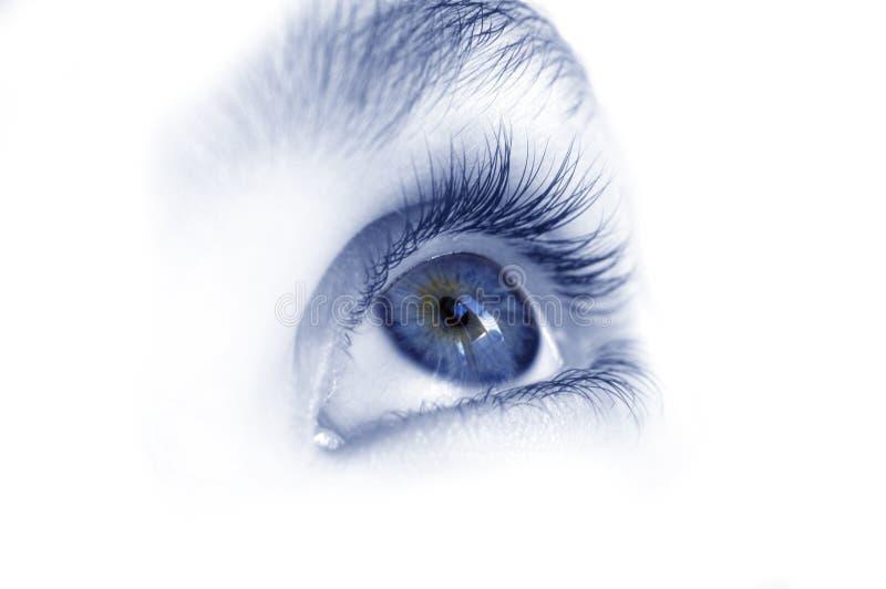 Occhio azzurro fotografia stock libera da diritti