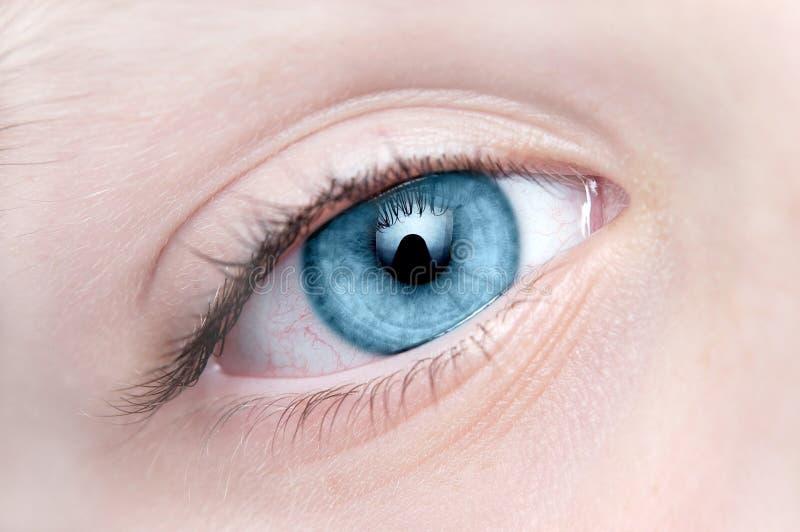 Occhio azzurro del primo piano fotografia stock libera da diritti