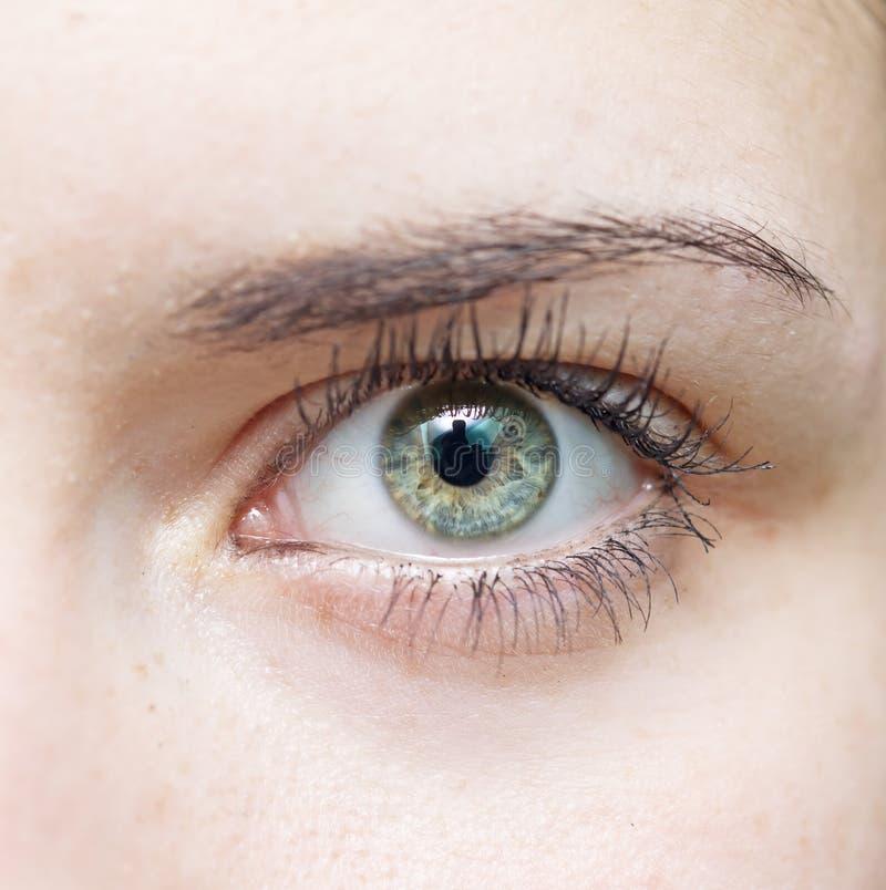Occhio azzurro dell'occhio della donna bello giovane? immagine stock