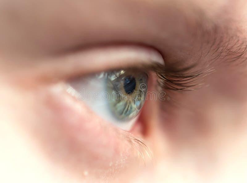 Occhio azzurro della fine del ragazzo sulla macro immagine stock