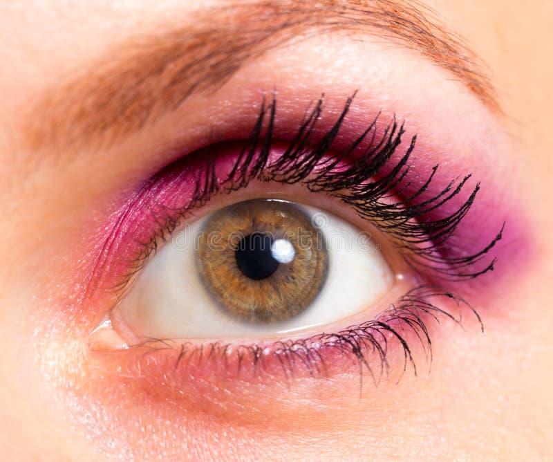 Occhio del Brown con trucco dentellare e viola luminoso immagini stock