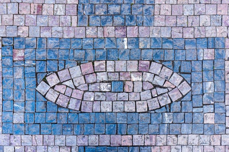 Occhio del ciottolo immagine stock