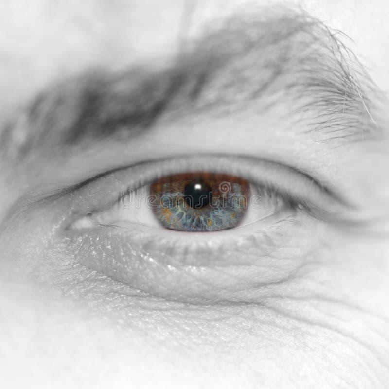 Occhio dell'uomo fotografie stock libere da diritti