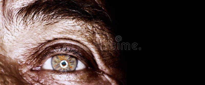 Occhio dell'uomo anziano fotografia stock libera da diritti