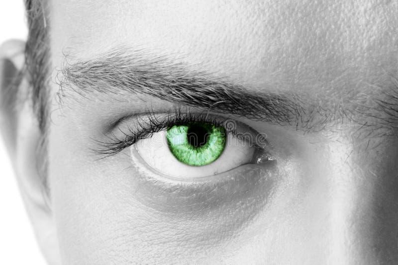 Occhio dell'uomo verde immagine stock