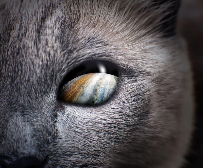 Occhio di gatto misterioso con la galassia porpora dentro immagine stock libera da diritti