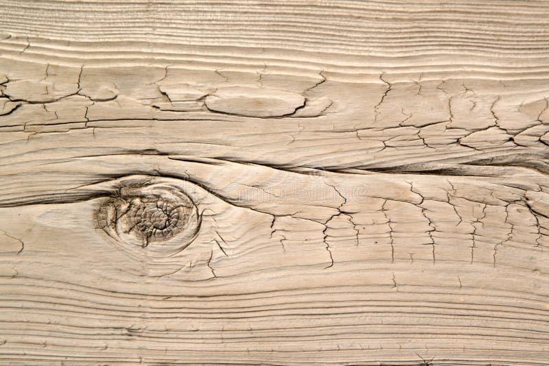 Occhio di legno struttura dell'annata del legname di vecchie e superficie di legno del fondo immagini stock