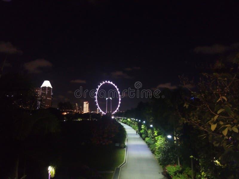 Occhio di Singapore immagine stock